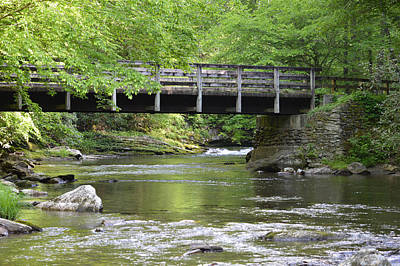 Photograph - Bridge Over Deep Creek by rd Erickson