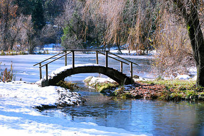 Photograph - Bridge Over Ice N Snow by William Havle