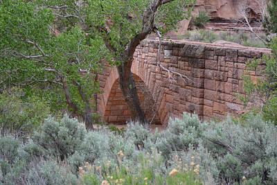 Photograph - Bridge Over Pine Creek - Zion National Park by rd Erickson