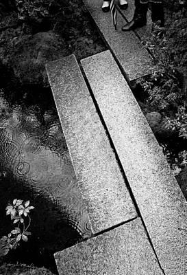 Photograph - Bridge Over Pond by Niels Nielsen