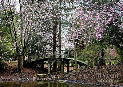 City Scenes - Bridge over pond by Wesley Farnsworth
