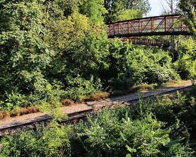 Bridge Over Train Art Print