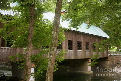 Photograph - Bridge by Sherri Williams