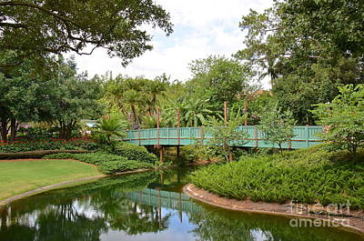 Photograph - Bridge To Adventure by Carol  Bradley