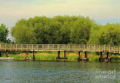 Photograph - Bridge To Killarney Mountain Lodge by Nina Silver