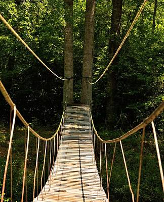 Photograph - Bridge To The Forest by Maria Urso