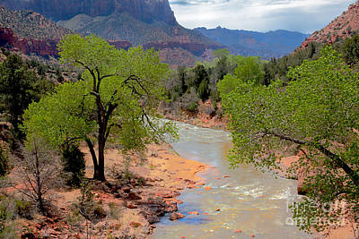 Photograph - Bridge View Of The Virgin River by Robert Bales