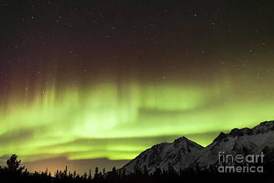 Photograph - Bright Aurora Borealis, Annie Lake by Philip Hart