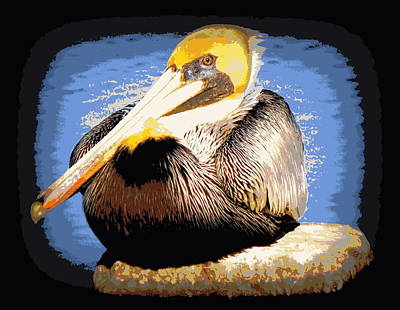 Photograph - Bright Blue Water Brown Pelican by Sheri McLeroy