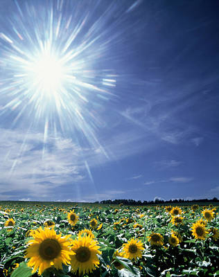 Bright Burst Of White Light Above Field Art Print by Panoramic Images