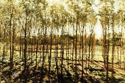 Bright Forest - Bosque Luminoso Original