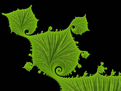 Digital Art - Bright Green Fractal Leaves Black Background by Matthias Hauser