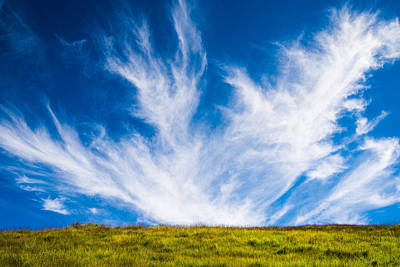 Bright Green Meadow And Deep Blue Sky Print by Matthias Hauser