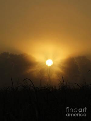 Photograph - Bright In The Mist by Scott B Bennett