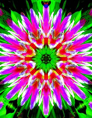 Photograph - Bright Lily Kaleidoscope 1 by Sheri McLeroy