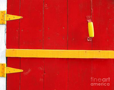 Photograph - Bright Old Door by Liz Leyden