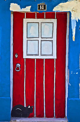 Photograph - Bright Red Door by David Letts