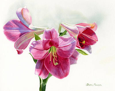Blooming Painting - Bright Rose Colored Lilies by Sharon Freeman