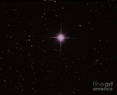 Capella Photograph - Bright Star Capella by John Chumack