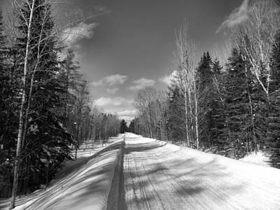 Photograph - Bright Winter Day by Gene Cyr