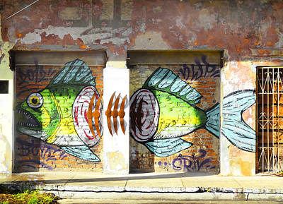 Brightly Colored Fish Mural Art Print