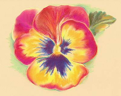 Pastel - Brightly Colored Pansy by MM Anderson