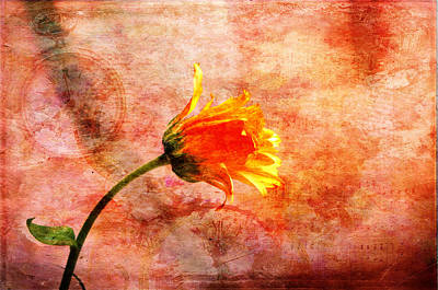 Photograph - Brightness In Time by Randi Grace Nilsberg