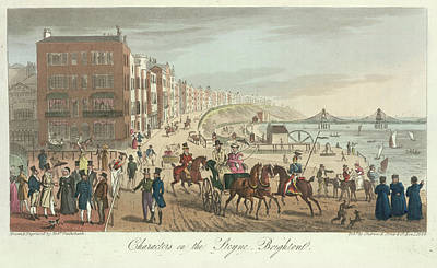 Sea Horse Photograph - Brighton Seafront by British Library