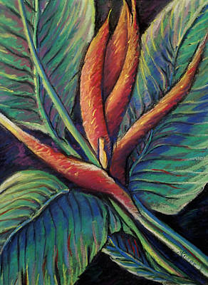 Painting - Brilliant Bird In Paradise by Mary Knape