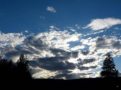 Photograph - Brilliant Evening Sky by Will Borden