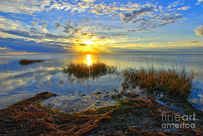 Brilliant Pamlico Sound Sunset On Outer Banks Art Print by Dan Carmichael
