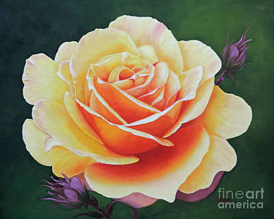 Brilliant Rose Art Print