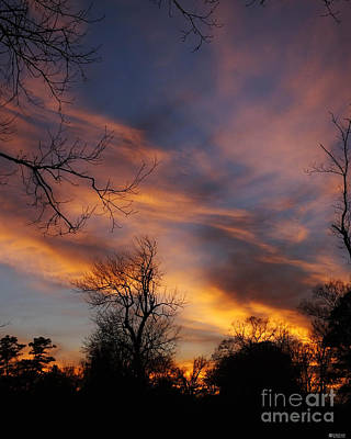Photograph - Brilliant Sunset by Lizi Beard-Ward