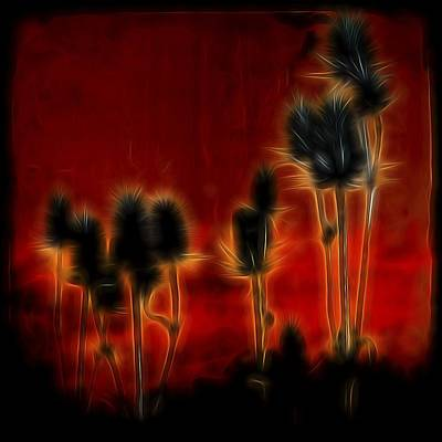 Weed Digital Art - Brilliant Teasel by Gothicrow Images