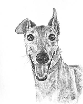 Rescued Greyhound Drawing - Brindle Greyhound Close Up Portrait by Kate Sumners