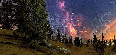 Bristlecone Forest And The Milky Way Art Print