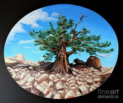 Painting - Bristlecone Pine by Art By - Ti   Tolpo Bader