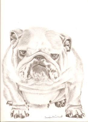 British Bulldog Winnie Art Print