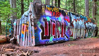 Photograph - British Columbia Box Car Graffiti by Adam Jewell