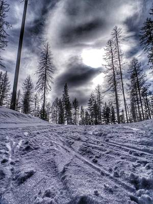 Photograph - British Columbia Nordic Trail by Pat Moore