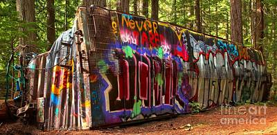 Photograph - British Columbia Train Wreck Graffiti by Adam Jewell