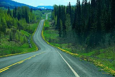 Photograph - British Columbia's Cassiar Highway   by Dyle   Warren