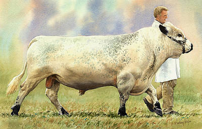 British White Bull Art Print by Anthony Forster