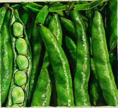Broad Beans Art Print by Arual Jay