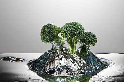 Broccoli Photograph - Broccoli Freshsplash by Steve Gadomski