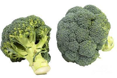 Broccoli Art Print by Patricia Hofmeester
