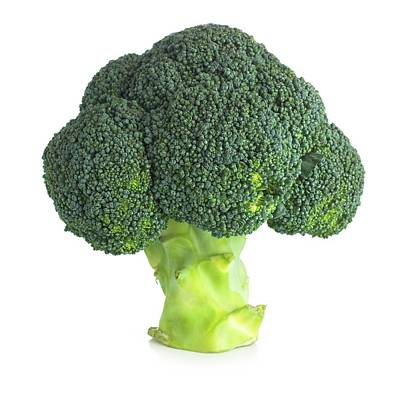 Broccoli Print by Science Photo Library