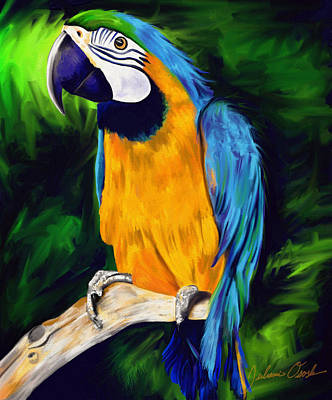 Painting - Brody Blue And Yellow Macaw Parrot by Julianne  Ososke