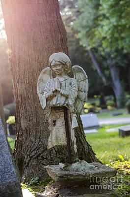 Photograph - Broken Angel Glen Ellyn by Deborah Smolinske