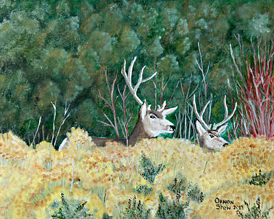 Broken Antler On Mule Deer Original by Ornon Shaw